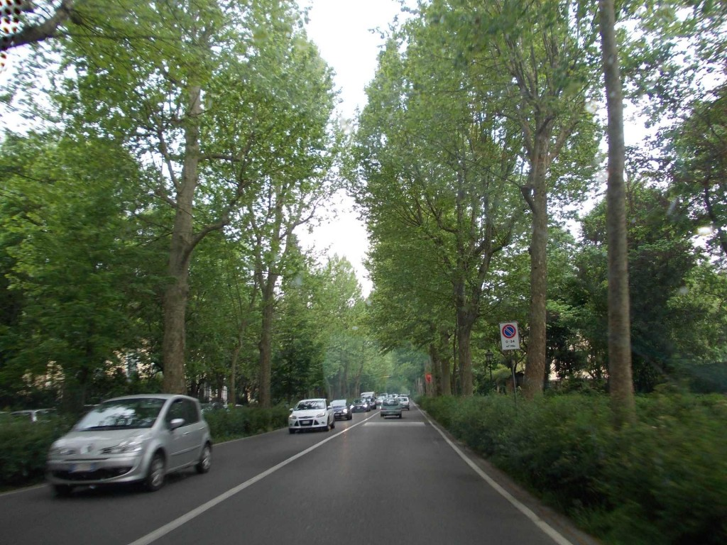 florence-tree-lined-road-piazzale-michelangelo